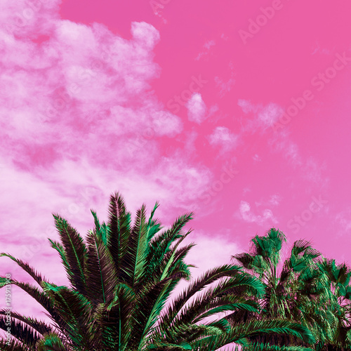 Foto op Canvas Candy roze Palm trees and pink sky. Unicorn style. Minimal art
