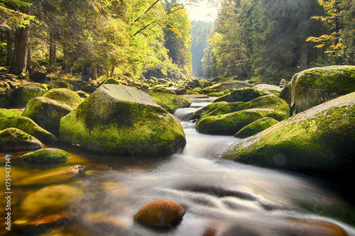 Photo  Long exposure of river Vydra in Bohemian Forest at colourful autumn, Sumava, Böh