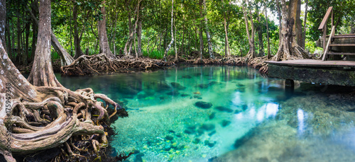 Zdjęcie XXL krabi, Tajlandia