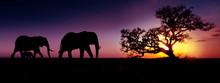 Elephant Family Sunset Silhoue...