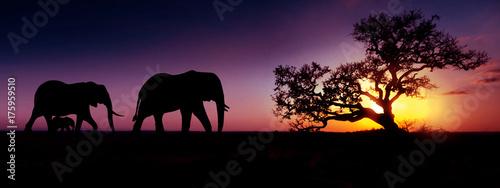 Türaufkleber Afrika Elephant family sunset silhouette