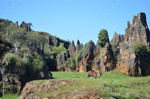 Photo Parque Natural Cabarceno Cantabria España