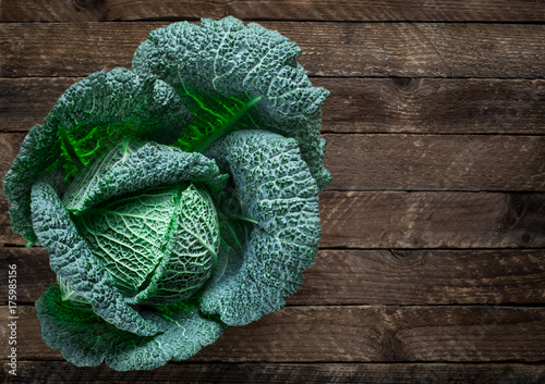 Obraz Fresh savoy cabbage - fototapety do salonu