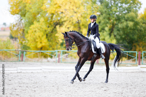 Young rider woman on bay horse performing advanced test on dressage competition. Equestrian event background with copy space