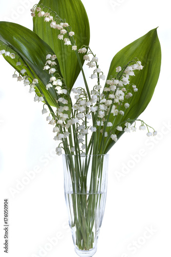 Poster Muguet de mai Lily of the valley and decorative onions