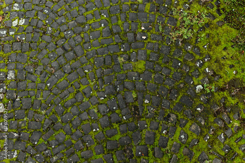 Photo Overhead view of cobblestone street texture with moss