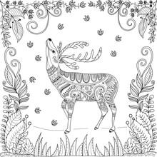 Coloring Book Page Of Deer In ...