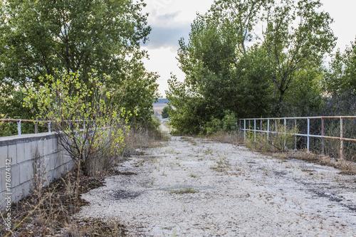 Tuinposter Weg in bos Puente abandonado