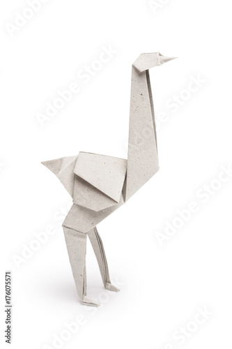 Origami ostrich isolated