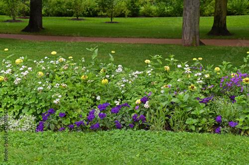 Papiers peints Jardin Blumen im Park
