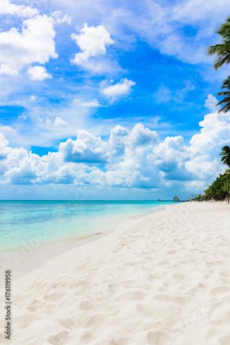 Staande foto Strand paradise tropical beach palm