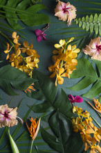 Tropical Flowers On Green