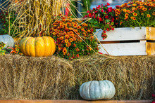 Yellow And Gray Pumpkins On A Bench With A Sheaf Of Hay. Nearby There Are Red Flowers In A White Box. Colorful Autumn In Moscow City, Russia.