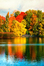 Beautiful Autumn Park With Col...
