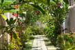 canvas print picture - Beautiful tropical garden