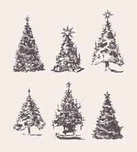 Set Drawn Christmas Trees Vint...