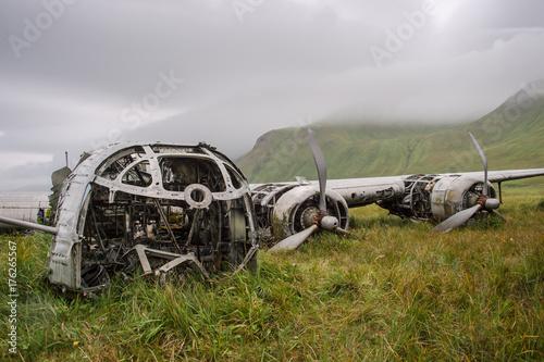 B-24D Liberator wreck on Atka Island, Alaska Canvas Print