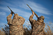 Duck Hunters Aiming Into Sky W...