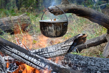 Pot Hangs On A Snag Over The F...