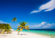 vacation at perfect tropical white sand beach