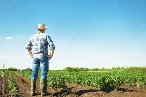 Fotografia  Farmer standing in field with green plants