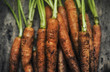 canvas print picture - Fresh organic carrots