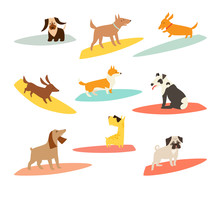 Dog Surfers Set, Vector Cartoo...