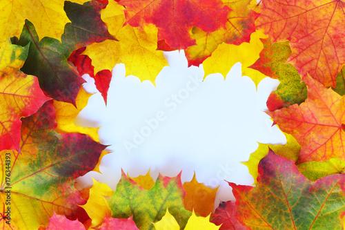 Autumn Leaves Frame Canvas Print