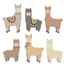 Cute Llama And Alpaca Set. Car...