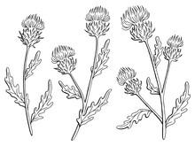 Thistle Flower Graphic Black W...