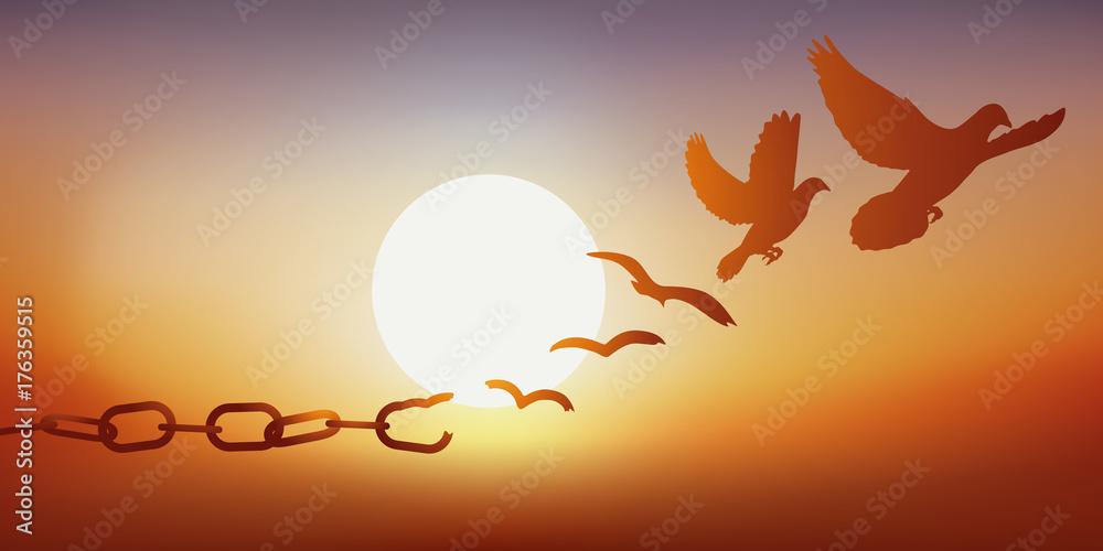 Fototapeta Concept de la liberté retrouvée, avec des chaînes qui se brisent et se transforment en une colombe qui s'envole au coucher du soleil.