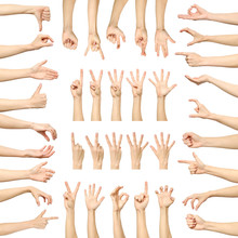 Multiple Woman's Hand Gestures Isolated On White