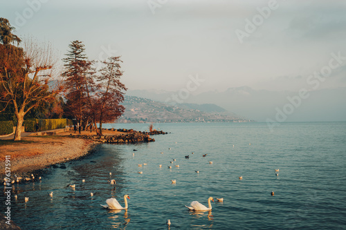 Zdjęcie XXL Lemański jezioro w wintertime, wizerunek brać w Lausanne, Szwajcaria