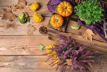 Fall Autumn Harvest Background...