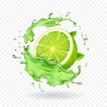Fresh Lime In Juice Splash Isolated Fruit Vector Illustration