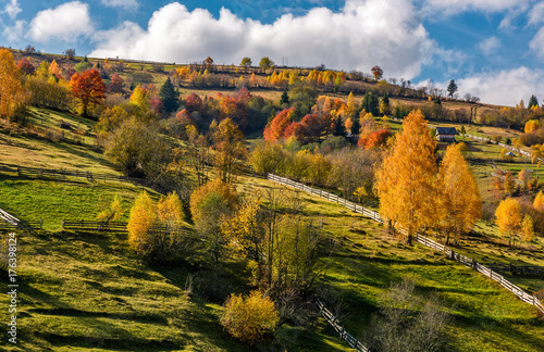 Stickers pour portes Orange eclat rural area on hillside in autumn. spectacular countryside scenery with yellow trees, fences and fields in fine weather condition