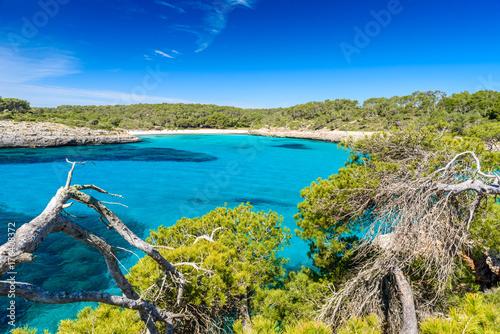 In de dag Kust Beautiful Beach of Cala S'Amarador at Mondrago - Natural Park on Majorca Spain, Balearic Islands, Mediterranean Sea, Europe