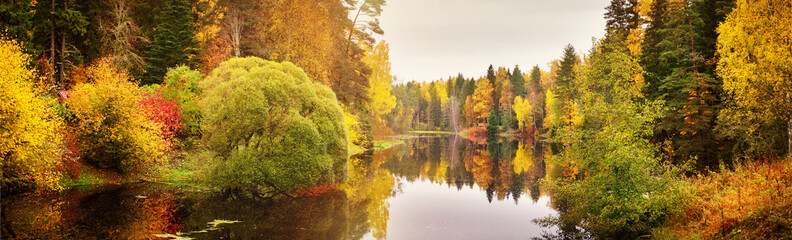 Fototapeta Do kuchni trees with multicolored leaves on shore at lake
