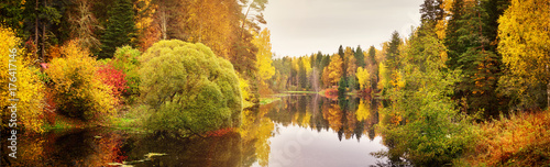 Montage in der Fensternische Herbst trees with multicolored leaves on shore at lake
