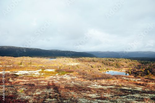 Fotobehang Zwavel geel Natural Autumn Tundra Mountain Landscape in the Mountains-Hills with Mountain Lake on the Kola Peninsula near the Town of Kandalaksha in Russia