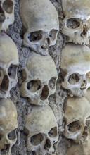 Pattern Of Skulls And Bones