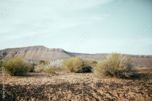 Desert scrub with moutains