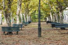 Park In Curia (Portugal)