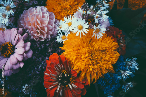 Foto op Aluminium Bloemen Magic flowers with dark leaves background.