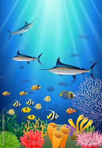 Papiers peints Recifs coralliens Blue Marlin Fish Swimming Under Water Cartoon Animal Character. Vector Illustration.