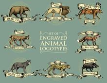 Big Set Of Vintage Emblems, Lo...