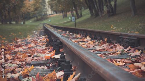 Keuken foto achterwand Retro Railway rails in autumn leaves