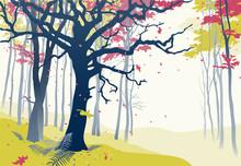 Forest In Autumn. Hand Drawn ...