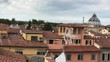 View of Square of Miracles from Pisa rooftop.