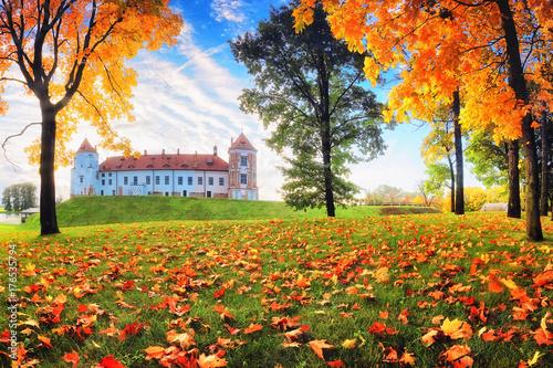 Plakat Jesień natura w parku